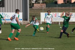 SV Viktoria U11 – WSC Hertha B
